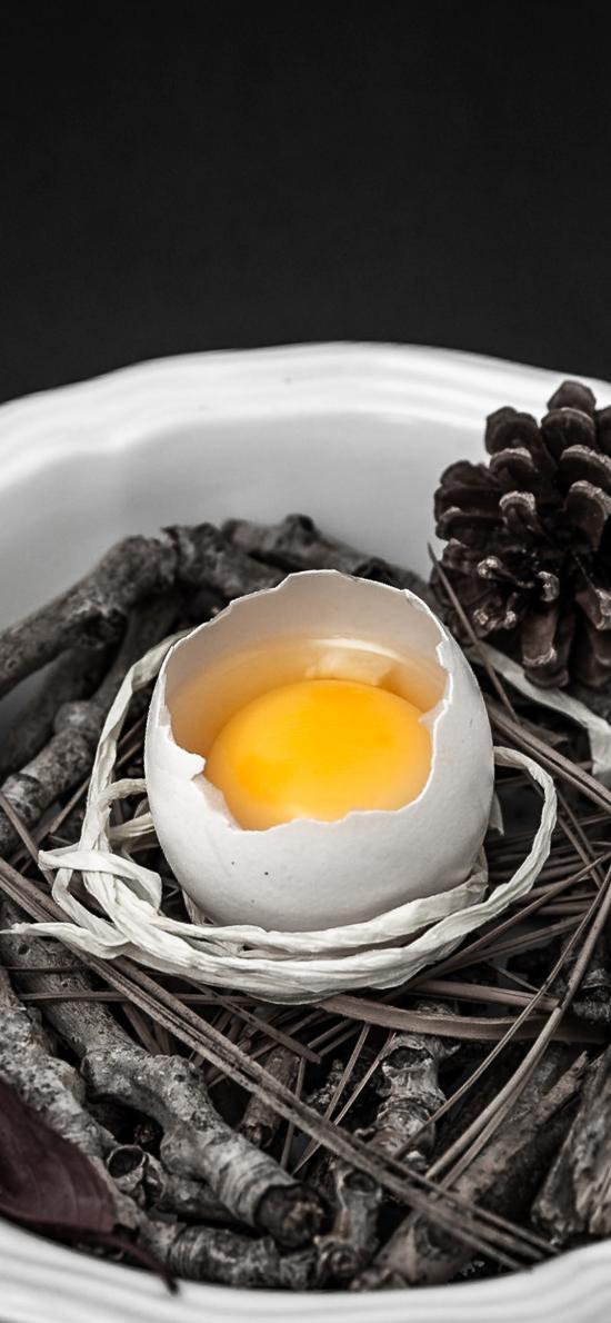 鸡蛋 松果 松塔 食材 树枝