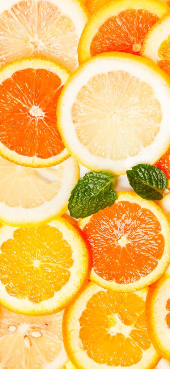 切片 平铺 橙 柑橘