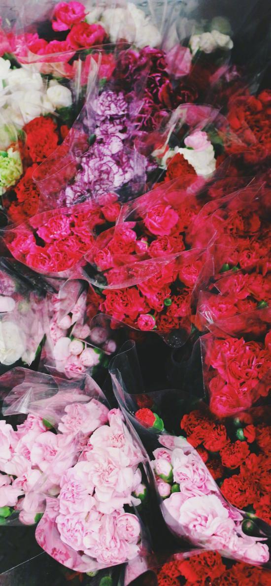 鮮花 康乃馨 花束 鮮艷