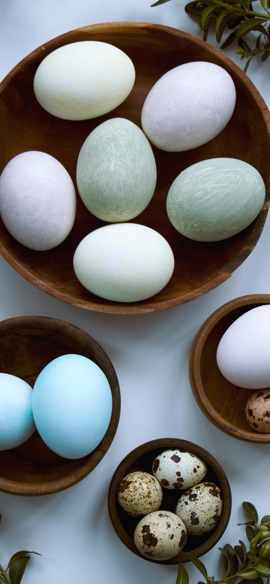 鸡蛋 鸭蛋 鹌鹑蛋 松花蛋