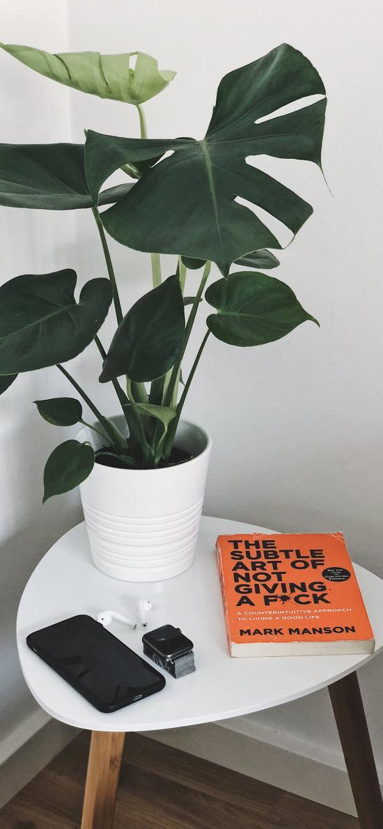 绿植 盆栽 静物  手机 书籍