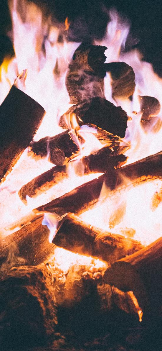 篝火 燃烧 火焰 木柴 柴火