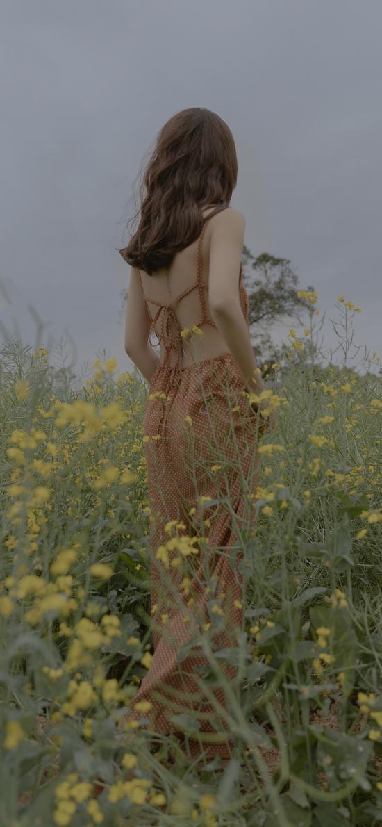 美女 背影 油菜花田 性感 吊带裙