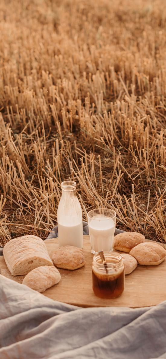 野外 野餐 牛奶 面包