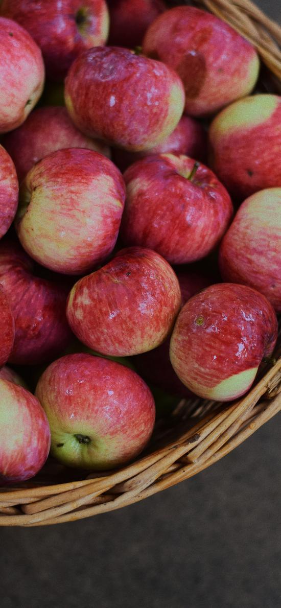 水果 苹果 编织篮 新鲜