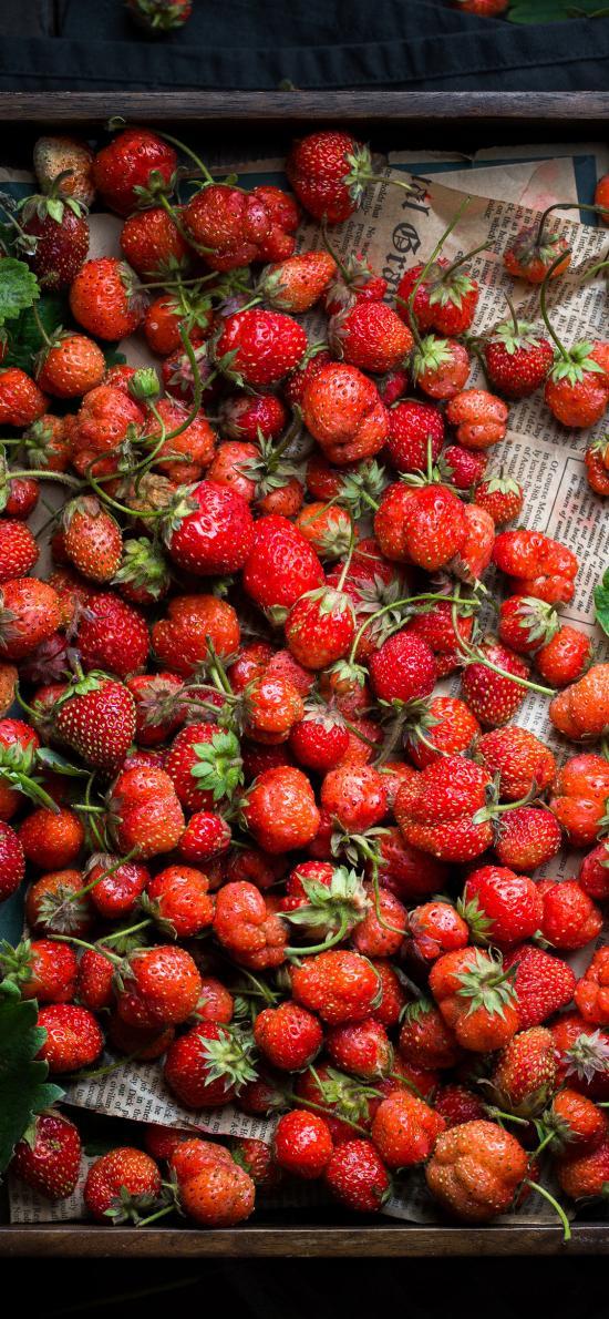 草莓 水果 新鲜 畸形