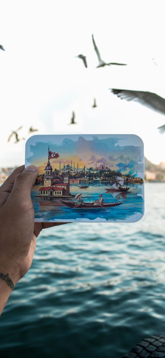 风景 绘画 艺术 海鸥