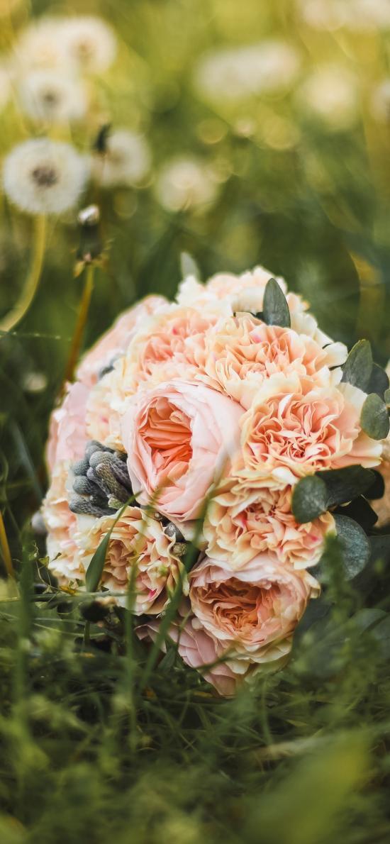 鲜花 捧花 鲜花 花束 草地