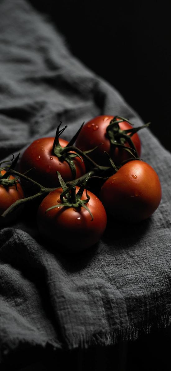 番茄 水果 西红柿 新鲜