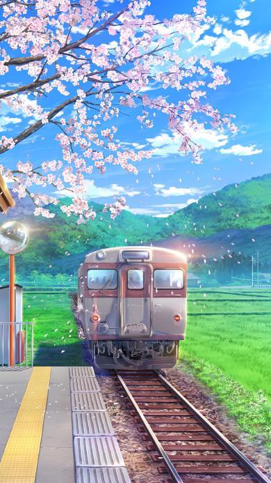 列车 樱花 漫画 唯美